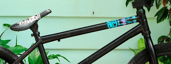 leon-bike
