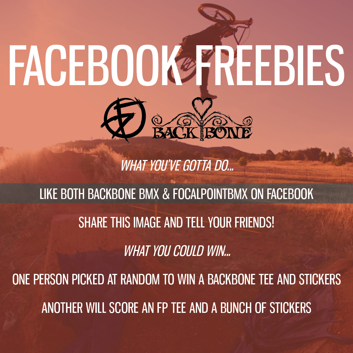 FACEBOOK FREEBIES backbone