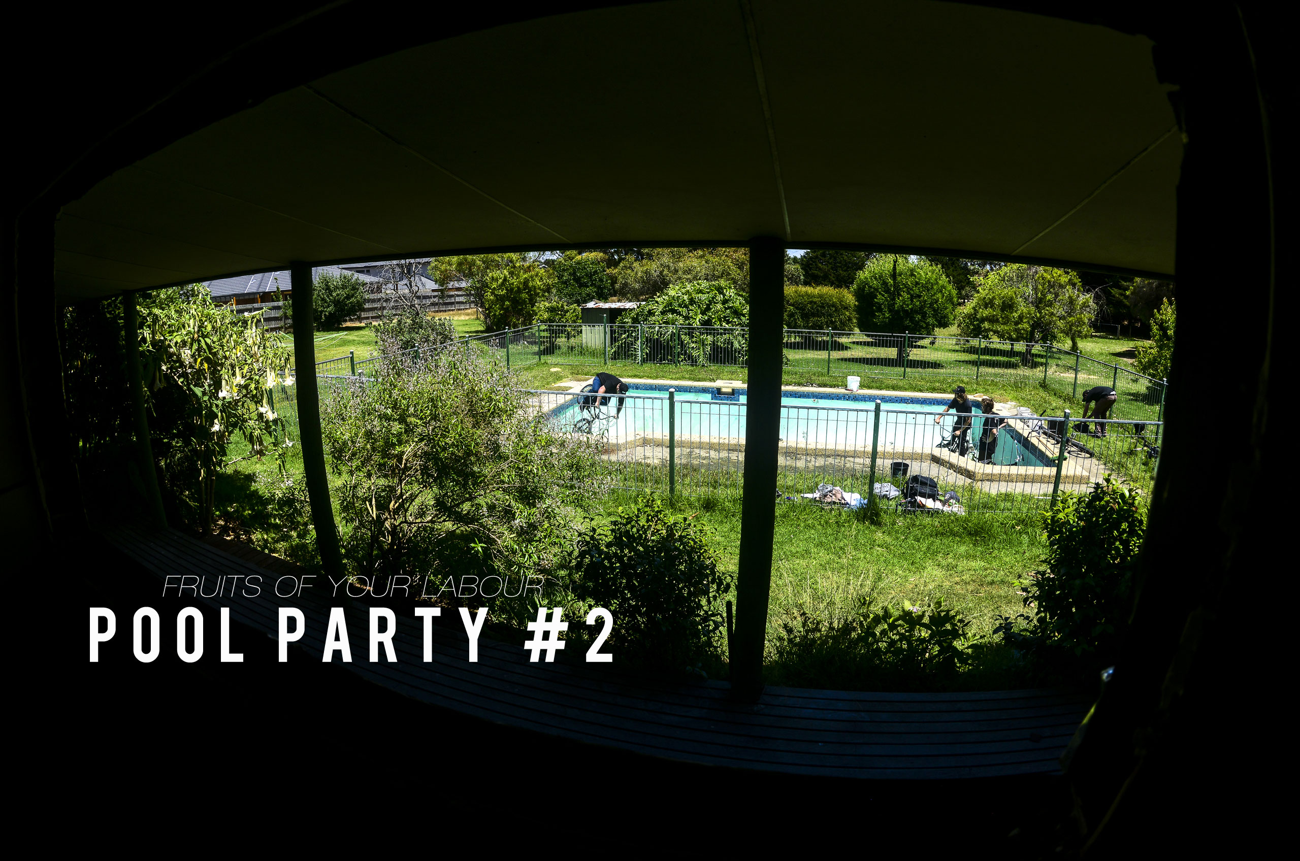 FRUITS OF YOUR LABOUR – POOL PARTY 2